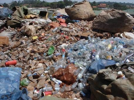 Patrizia Sterenberg Salinas 183 Plastic Recycling Industries