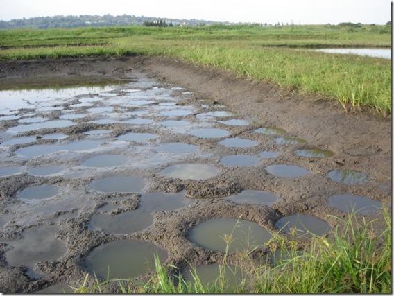 Ugandajuli2007 015